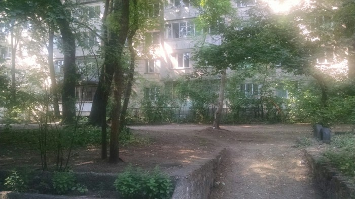 Backyard of apartment block